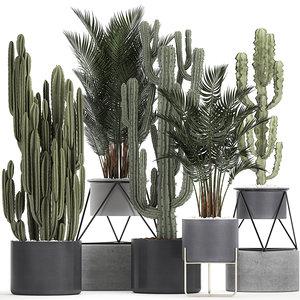 3D decorative cactus black flowerpots