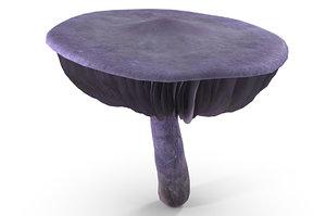cortinarius violaceus mushroom 3D model