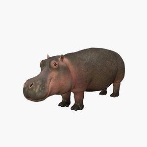 hippopotamus rigged 3D model