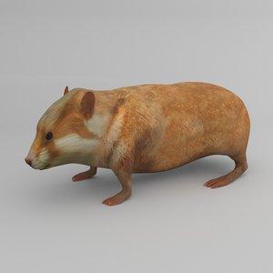 hamster rigged 3D model