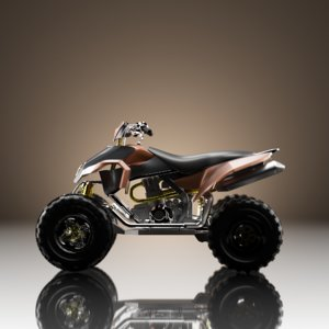 vehicles motorcycle model