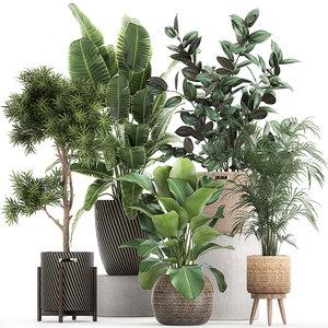ornamental plants baskets 3D model