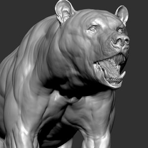 3D bear zbrush model