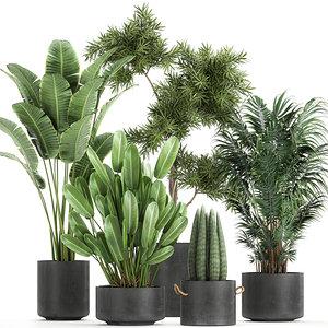 3D plants decorative pot