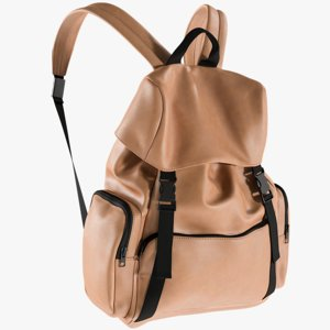 3D realistic men s backpack model