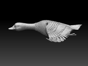 3D duck goose bird model