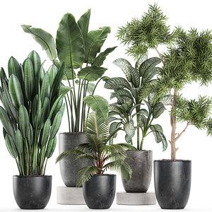 plants flowerpots pots decorative 3D model