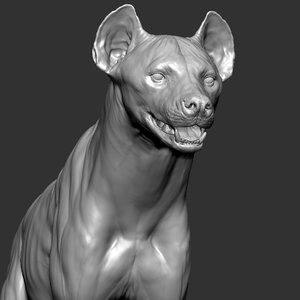 hyena crocuta 3D model