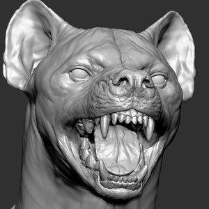 3D hyena facial expressions