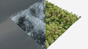 3D model winter forest blender