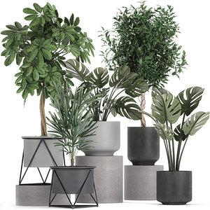 plants flowerpots pots 3D