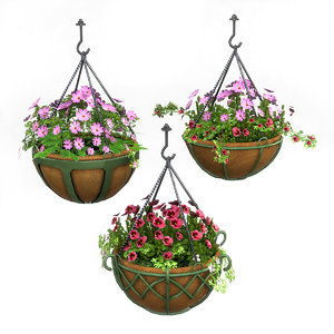 3D hanging potted plants model