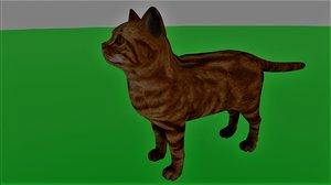 cats animal 3D