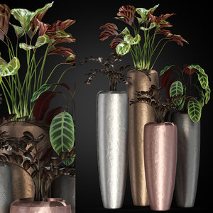3D model plants 272