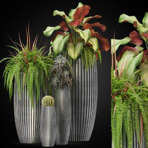 plants 273 3D