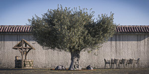3D trunk retopo tree