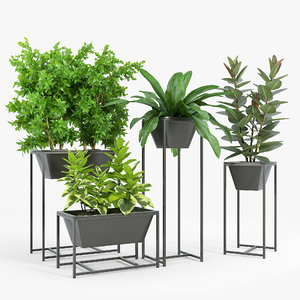 3D plant stand
