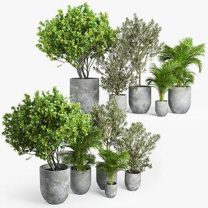 tree bush plants 3D model