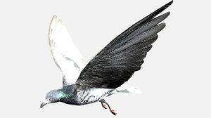 3D flying pigeon b