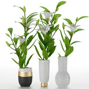 vase lily 3D