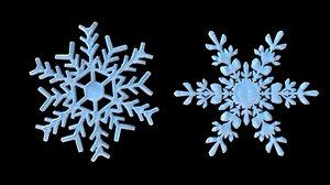 2 different snowflake 3D model