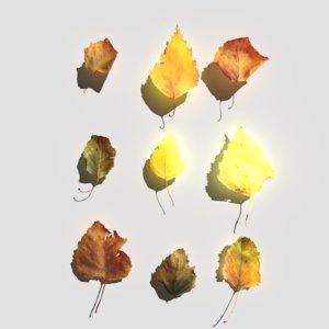 3D dry birch leaves pack model