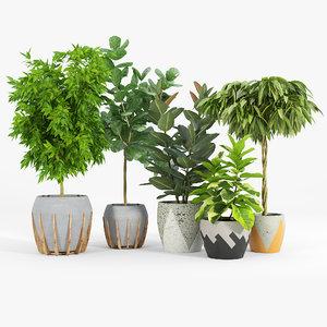 3D tree bush leaf flowerpot model