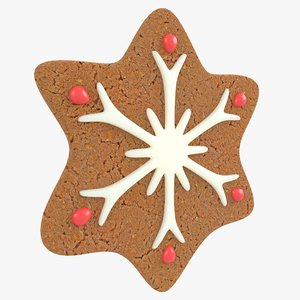 3D gingerbread star christmas cookie