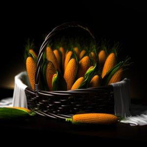 fruits vegetables 3D