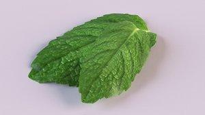 3D lemon mint leaves leaf