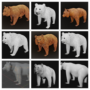 3D bear nature
