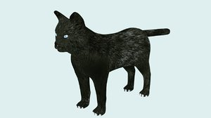 3D black cat rigged ready model