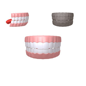 human mouth 02 teeth 3D model