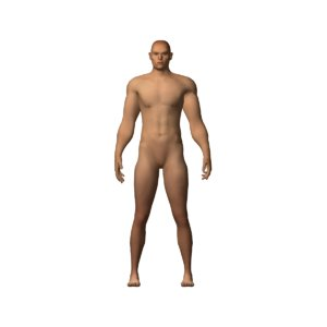 intimidating character ready dae 3D model