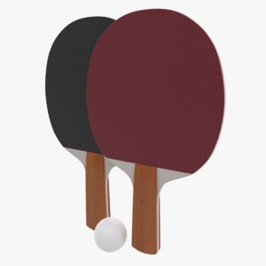 3D ping pong paddles ball model