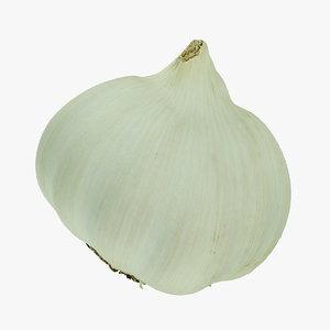 3D garlic 03 raw scan