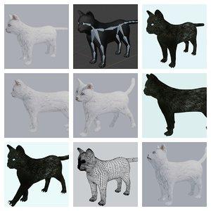 black white cat rigged 3D model