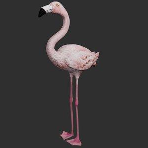 flamingo bird ready model