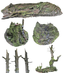 forest asset pack hd 3D