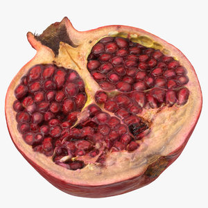 3D model pomegranate half cut 01