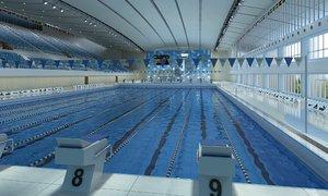 swim stadium 3D model