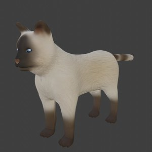 siamese cat rigged 3D