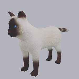 3D siamese cat rigged