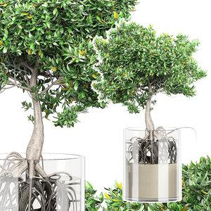 flower pack 158 tree model