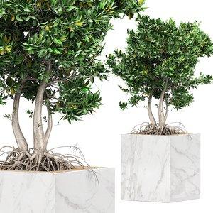 3D flower pack 159 tree model