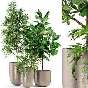 3D plants 276