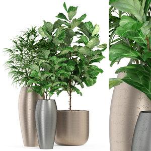 3D plants 277