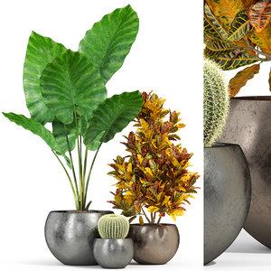 plants 278 3D