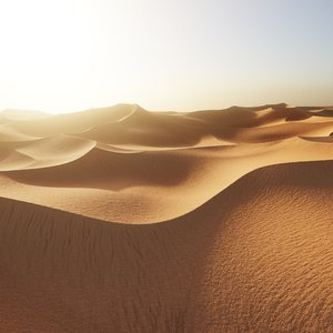 desert dunes 3D model