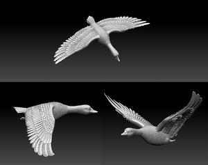 duck goose bird 3D